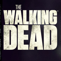 T-Shirts The Walking Dead