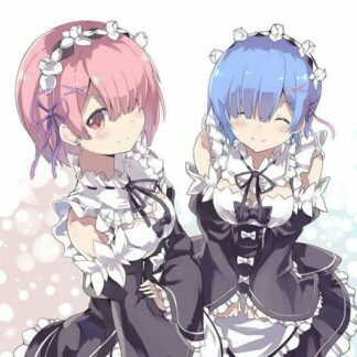 Figurines Re Zero